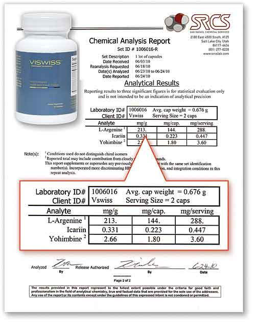 Viswiss Lab Report
